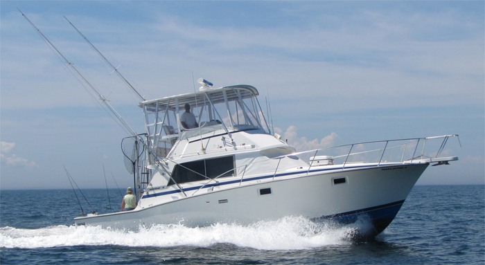 Connecticut charter fishing marlintini sportfishing inc for Bass fishing in ct